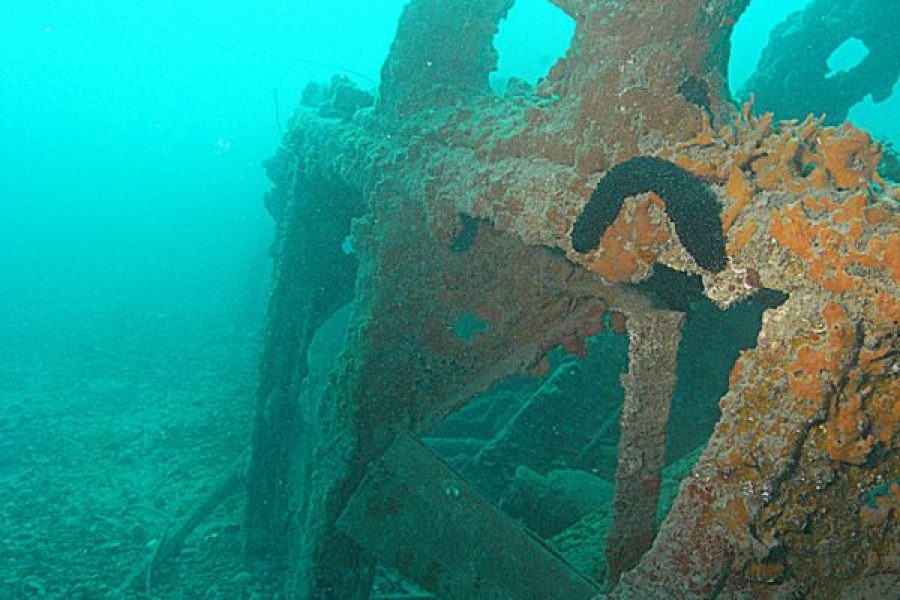 La valorizzazione della risorsa marina e i suoi relitti. Un pezzo di storia veneta