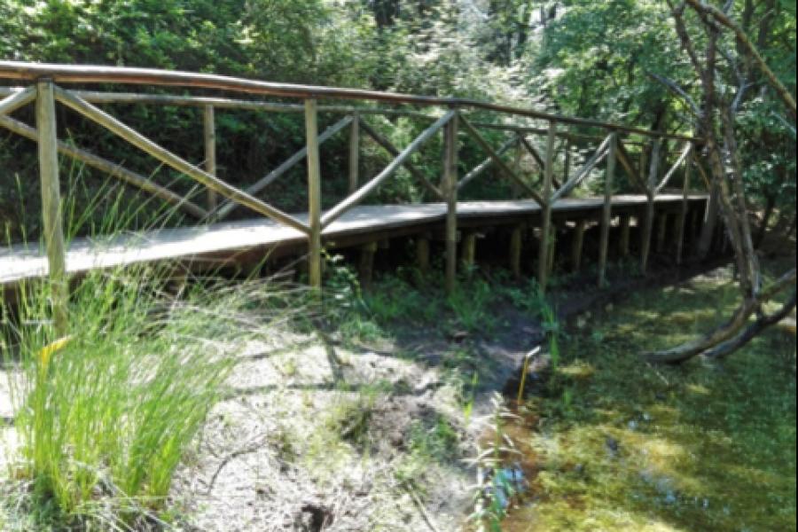 Il miglioramento dei parametri di naturalità del Giardino Botanico di Porto Caleri