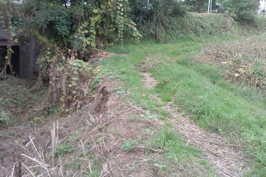 Avviati i lavori di consolidamento delle difese arginali del fiume Bacchiglione