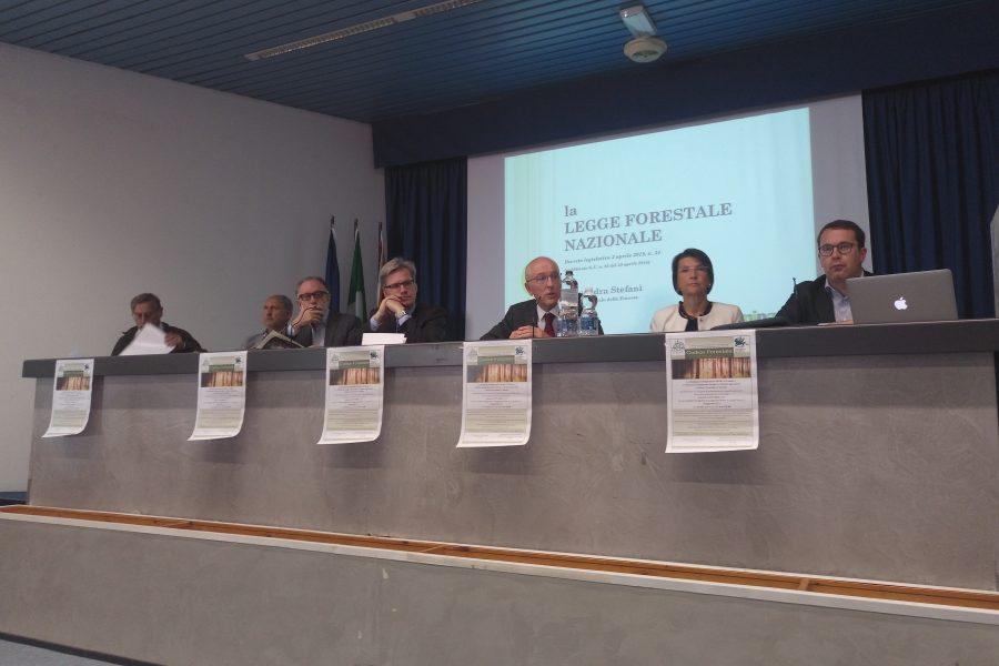 """Nuova normativa forestale: """"fondamentale responsabilizzare e semplificare"""""""