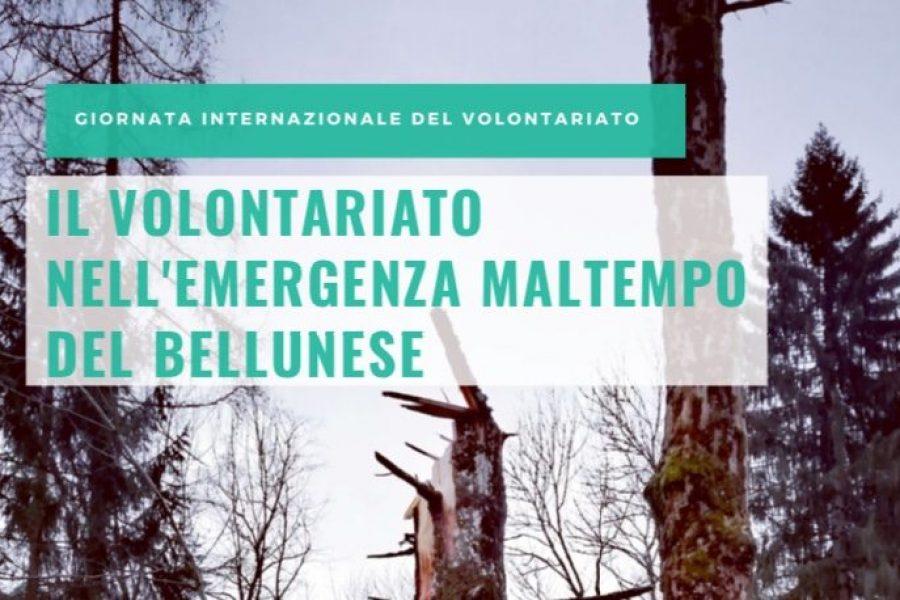 In occasione della Giornata internazionale del Volontariato, mercoledì 5 un convegno a Belluno