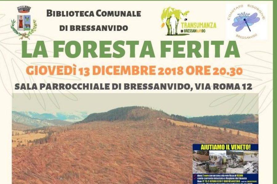 """A Bressanvido (VI) una serata dedicata alla """"foresta ferita"""""""
