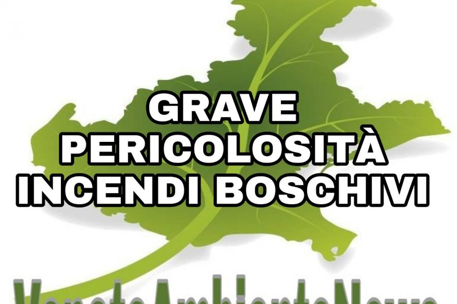 Dichiarazione dello stato di grave pericolosità per gli incendi boschivi nei territori di Padova Rovigo e Venezia