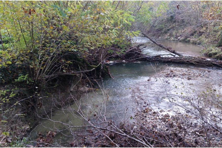Partiti i lavori per il ripristino della funzionalità idraulica del torrente Curogna