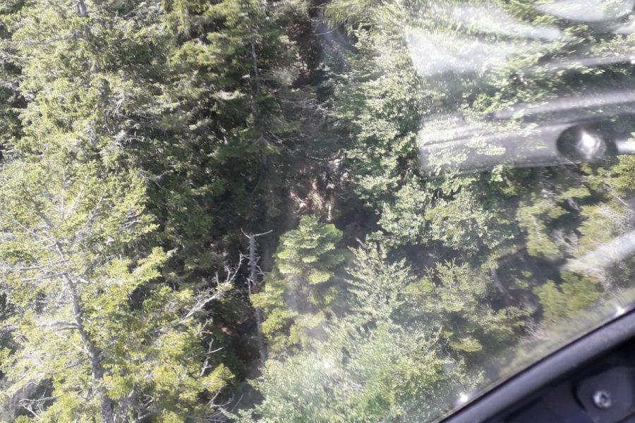Incendio in Val di Zoldo. Situazione verso la normalità
