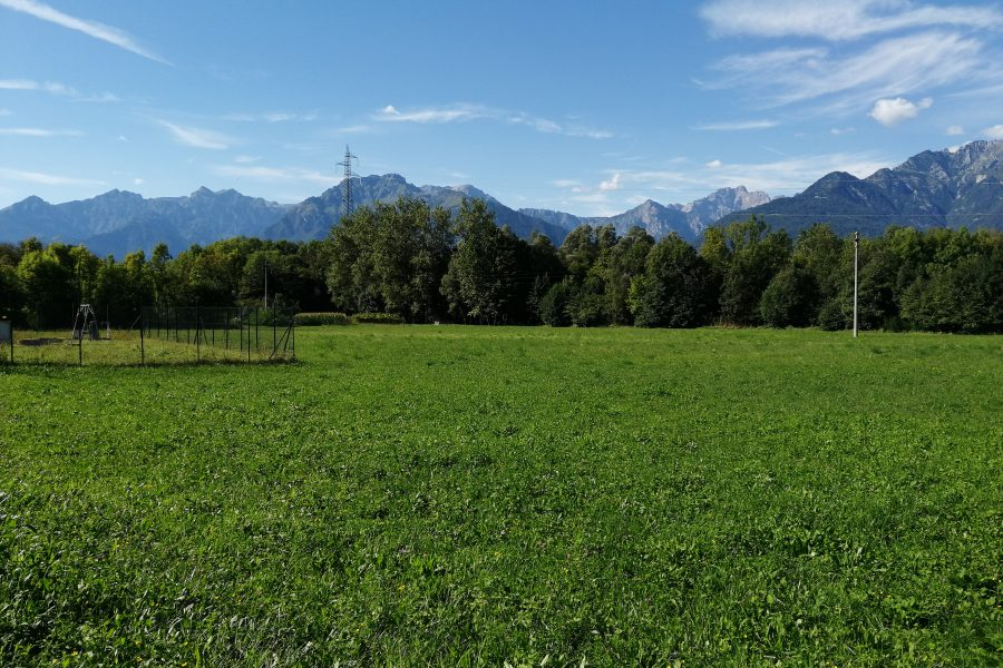 Sopralluogo a Cesana in Comune di Borgo Valbelluna