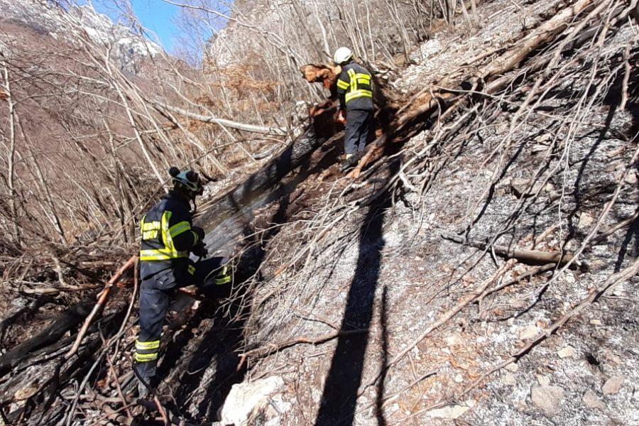 """Chiuso l'incendio di Mezzocanale in Val di Zoldo (BL). Bottacin: """"oggi bonifiche e controlli puntuali"""""""