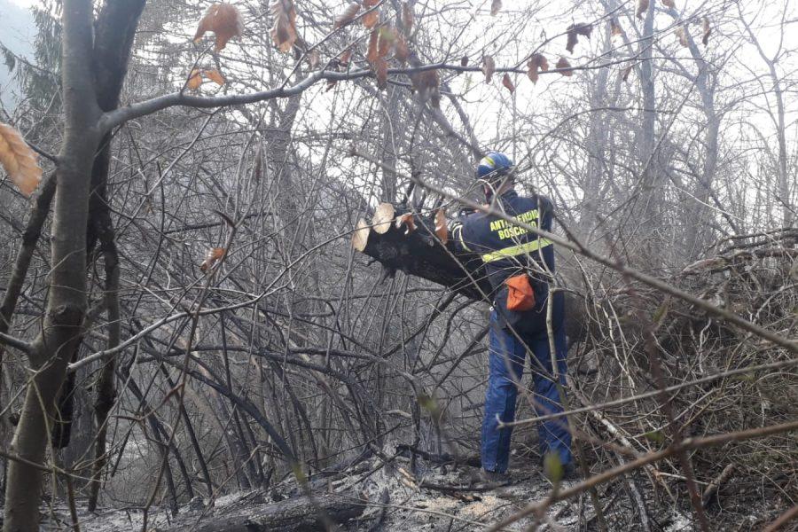 Incendio boschivo in Val Carbonaia a Seren del Grappa. Immediato intervento dell'AIB regionale